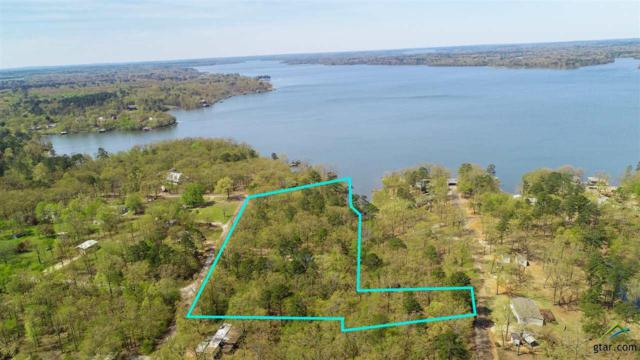 TBD Cr 2601, Pittsburg, TX 75686 (MLS #10106894) :: The Wampler Wolf Team