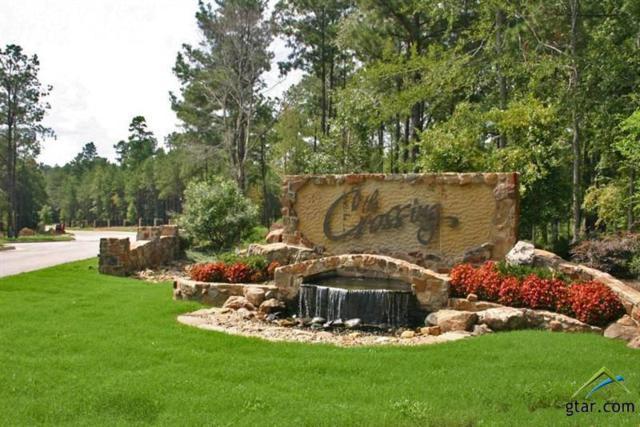 Lot 2 Forest Ridge, Tyler, TX 75703 (MLS #10106980) :: RE/MAX Professionals - The Burks Team