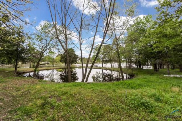 10164 Gaillard Lake, Wills Point, TX 75169 (MLS #10107125) :: The Wampler Wolf Team