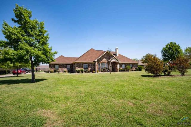 1033 W Secretariat, Terrell, TX 75160 (MLS #10107376) :: Roberts Real Estate Group