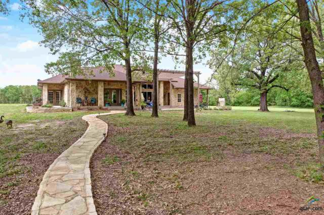 471 Pr 5552, Alba, TX 75410 (MLS #10107386) :: Roberts Real Estate Group