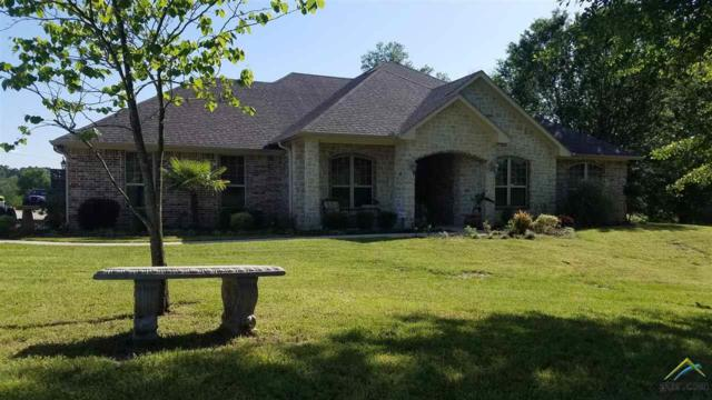 17334 Cr 1325, Flint, TX 75762 (MLS #10107387) :: RE/MAX Impact
