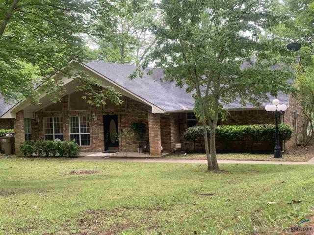 2873 Anderson County Road 319, Frankston, TX 75763 (MLS #10107414) :: The Wampler Wolf Team