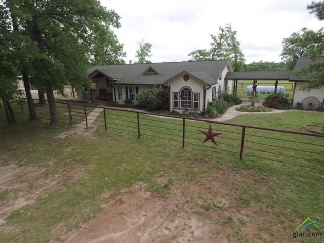 524 County Road 3992, Winnsboro, TX 75494 (MLS #10107492) :: RE/MAX Professionals - The Burks Team