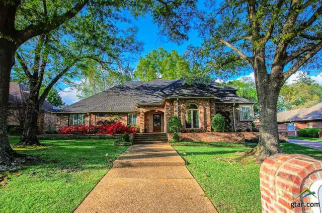 1403 Brandywine Dr., Tyler, TX 75703 (MLS #10107507) :: The Wampler Wolf Team