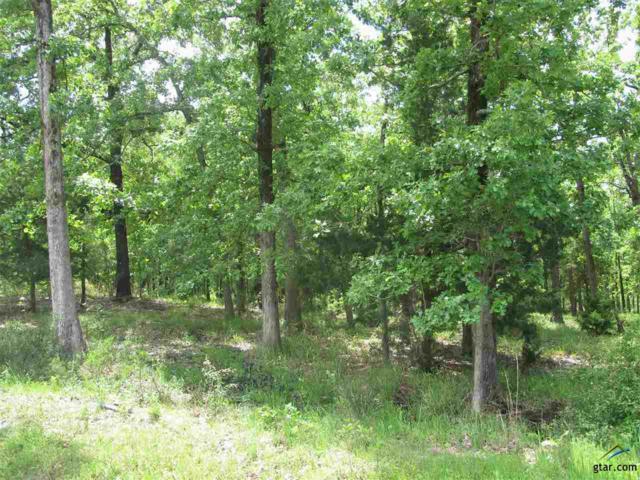 0 Eland Trail, Larue, TX 75770 (MLS #10107756) :: The Wampler Wolf Team