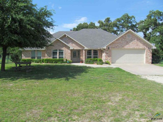 2929 Sw Cr 3170, Winnsboro, TX 75494 (MLS #10107766) :: The Wampler Wolf Team