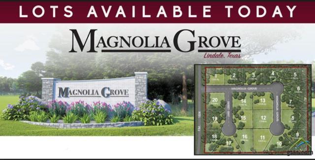 13925 Magnolia Grove, Lindale, TX 75771 (MLS #10107820) :: RE/MAX Professionals - The Burks Team
