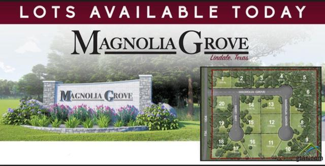 13949 Magnolia Grove, Lindale, TX 75771 (MLS #10107824) :: RE/MAX Professionals - The Burks Team