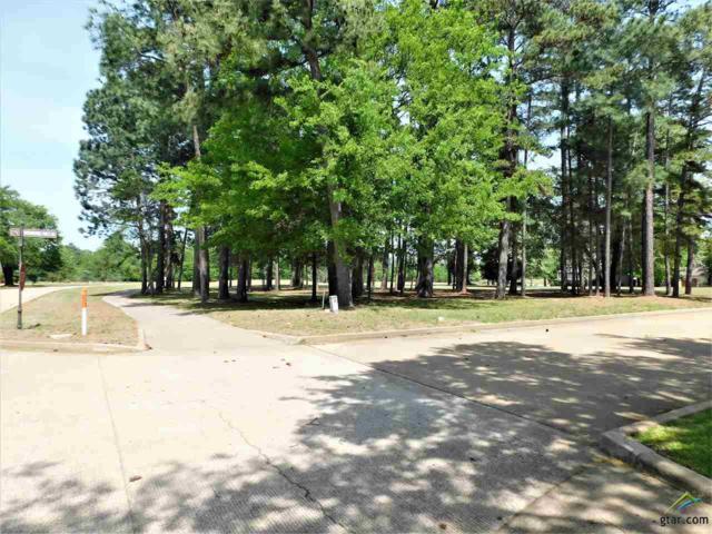 101 Whispering Pines, Bullard, TX 75757 (MLS #10107914) :: RE/MAX Professionals - The Burks Team