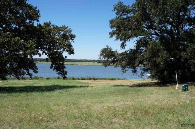 68 Shore Crest Way, Athens, TX 75752 (MLS #10107916) :: RE/MAX Impact