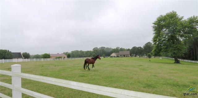 24011 Stallion Park Pl, Lindale, TX 75771 (MLS #10107975) :: RE/MAX Professionals - The Burks Team