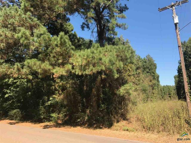 0000 Cr 2110, Troup, TX 75789 (MLS #10108140) :: The Wampler Wolf Team