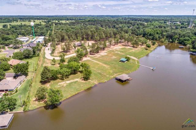 22240 Mallards Cove Court #7, Bullard, TX 75757 (MLS #10108403) :: RE/MAX Impact