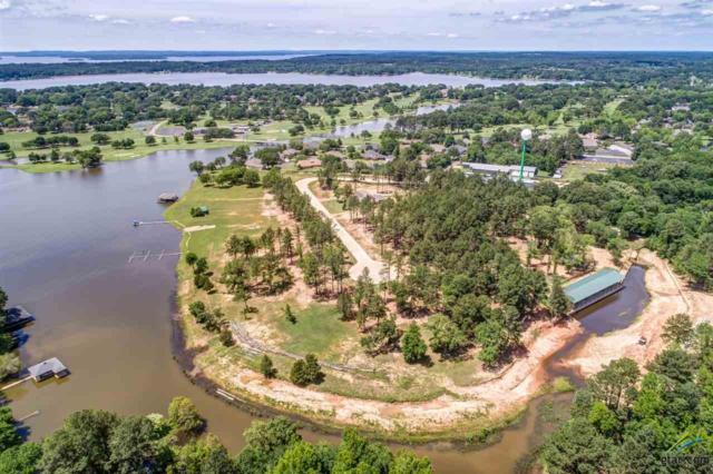22228 Mallards Cove Court #5, Bullard, TX 75757 (MLS #10108404) :: RE/MAX Professionals - The Burks Team