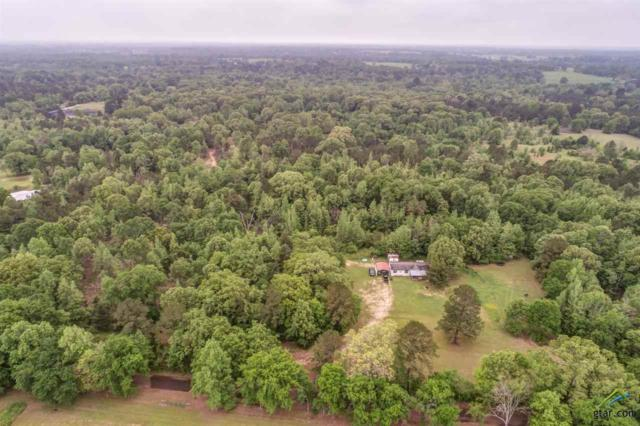 24404 County Road 2116, Troup, TX 75789 (MLS #10108509) :: RE/MAX Professionals - The Burks Team