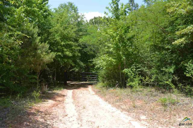 TBD Cr 3416, Pittsburg, TX 75686 (MLS #10108579) :: RE/MAX Impact
