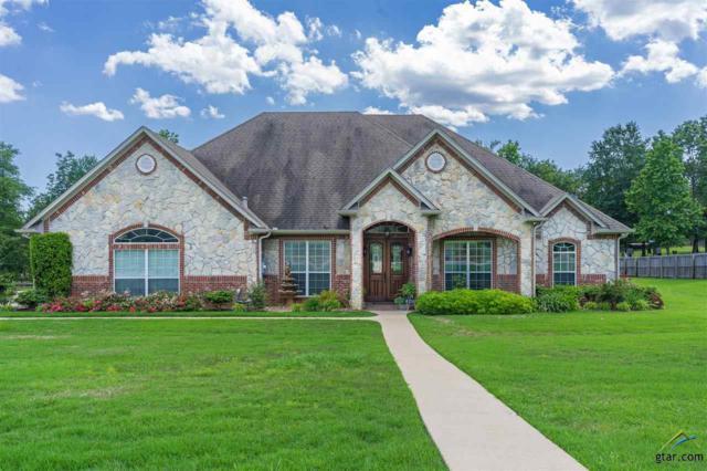 295 Timber Falls Dr., Longview, TX 75605 (MLS #10108599) :: RE/MAX Impact