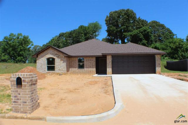 534 Kingsway, Overton, TX 75684 (MLS #10108690) :: RE/MAX Impact