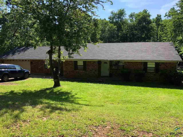 18376 Tall Pines Dr., Tyler, TX 75703 (MLS #10108693) :: RE/MAX Impact