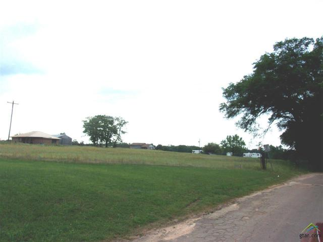 0000 Fm 1519, Leesburg, TX 75451 (MLS #10108694) :: RE/MAX Professionals - The Burks Team