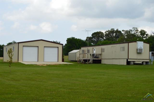 TBD Cr 1214, Quitman, TX 75783 (MLS #10108767) :: The Wampler Wolf Team