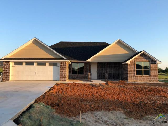 13359 Hickory Oak Drive (Lot 14), Lindale, TX 75771 (MLS #10108817) :: The Wampler Wolf Team
