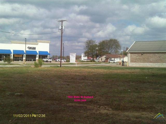 TBD E Main, Bullard, TX 75757 (MLS #10108832) :: The Wampler Wolf Team