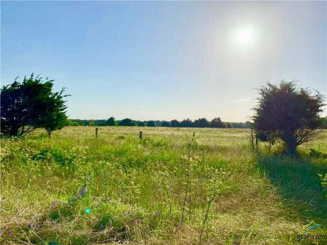 1216 Farm Market 2649, Campbell, TX 75422 (MLS #10108842) :: The Wampler Wolf Team