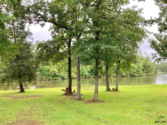X Private Road 52126, Pittsburg, TX 75686 (MLS #10108848) :: RE/MAX Impact