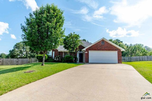 1920 Rocky Mountain Ln, Tyler, TX 75703 (MLS #10108876) :: RE/MAX Impact