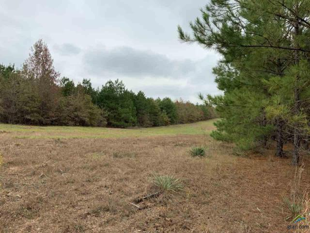 0 Cr 2307, Lone Star, TX 75668 (MLS #10108967) :: The Wampler Wolf Team
