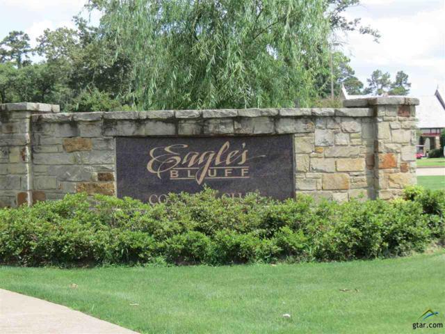 137 Eagle's Bluff Blvd. S, Bullard, TX 75757 (MLS #10109259) :: RE/MAX Professionals - The Burks Team
