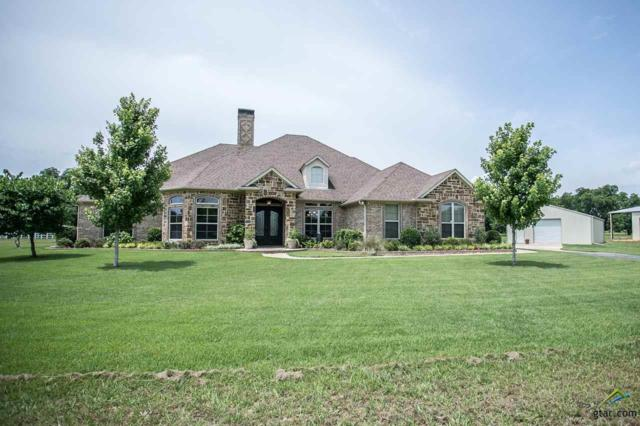 23050 Cr 121 (Oak Grove Rd), Bullard, TX 75757 (MLS #10109304) :: RE/MAX Impact