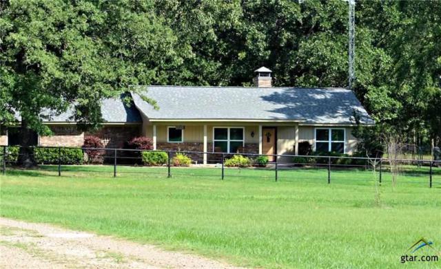 202 Vz County Road 1211, Ben Wheeler, TX 75754 (MLS #10109373) :: RE/MAX Professionals - The Burks Team
