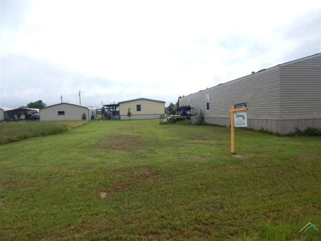 547 Geronimo, Quitman, TX 75783 (MLS #10109433) :: The Wampler Wolf Team