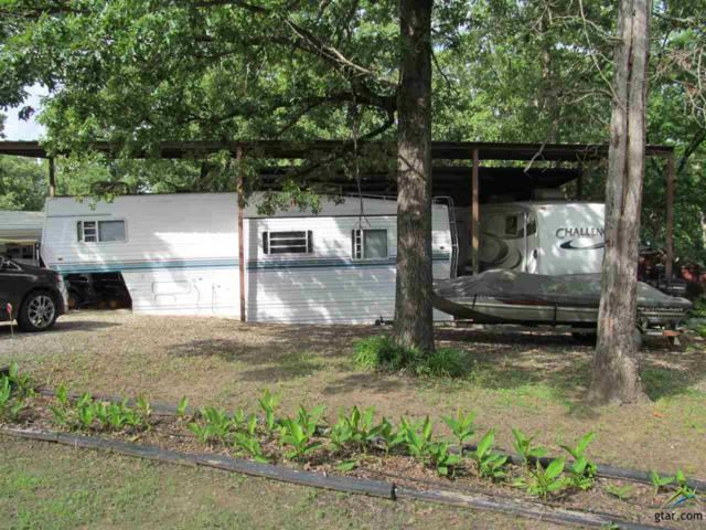 Lot 102-103 White Oak Dr., Yantis, TX 75497 (MLS #10109472) :: RE/MAX Impact