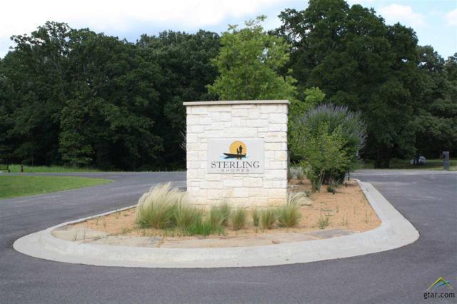 Lot 41 Waters Edge Lane, Scroggins, TX 75480 (MLS #10109671) :: The Wampler Wolf Team