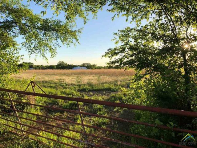 TBD County Road 3565, Dike, TX 75437 (MLS #10109816) :: RE/MAX Impact