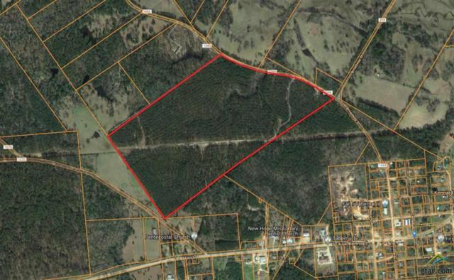 TBD County Rd 1095, Kennard, TX 75847 (MLS #10109924) :: Griffin Real Estate Group