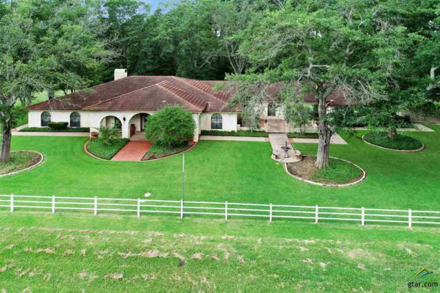 16027 County Line Rd, Troup, TX 75789 (MLS #10110025) :: The Wampler Wolf Team