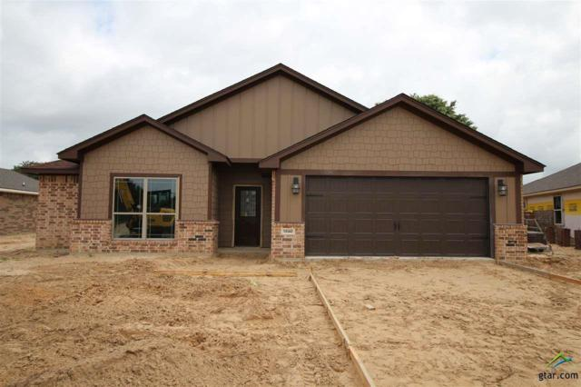 15342 Spring Oaks Dr, Lindale, TX 75771 (MLS #10110075) :: RE/MAX Professionals - The Burks Team