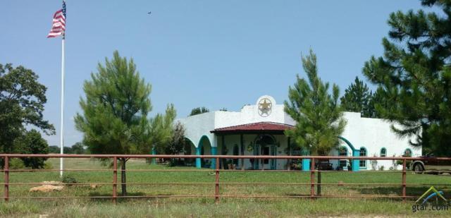 3500 County Road 2301, Sulphur Springs, TX 75482 (MLS #10110174) :: RE/MAX Professionals - The Burks Team