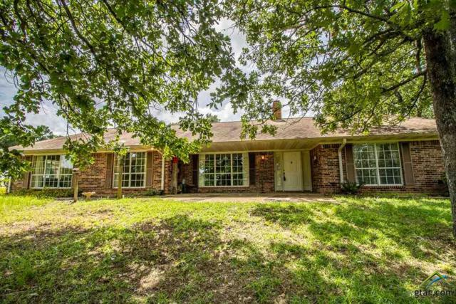 17507 Cr 479, Lindale, TX 75771 (MLS #10110213) :: RE/MAX Professionals - The Burks Team