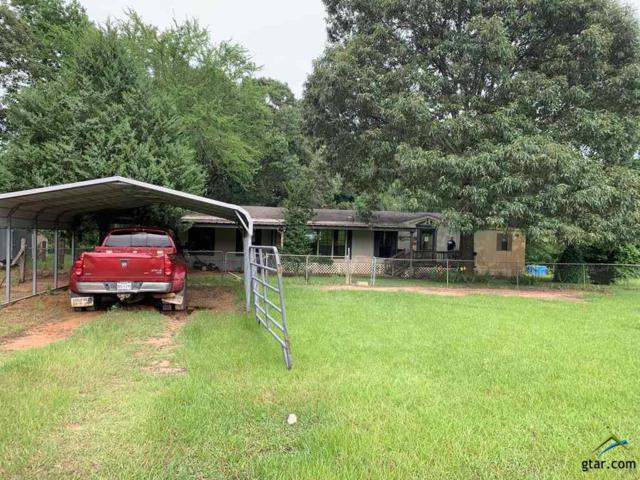 4692 An County Rd 359, Palestine, TX 75803 (MLS #10110220) :: The Wampler Wolf Team