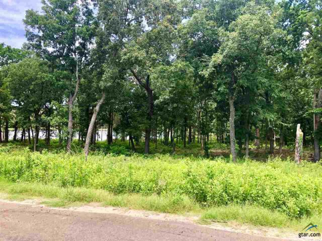 Lot 12&13 County Road 2307, Mineola, TX 75773 (MLS #10110244) :: The Wampler Wolf Team