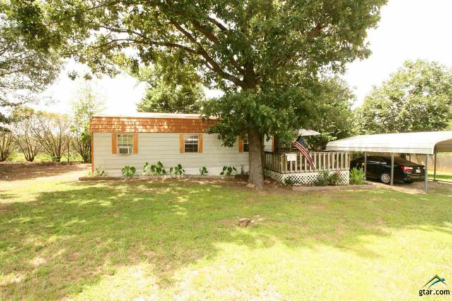 54 Pr 52040, Pittsburg, TX 75686 (MLS #10110252) :: The Wampler Wolf Team