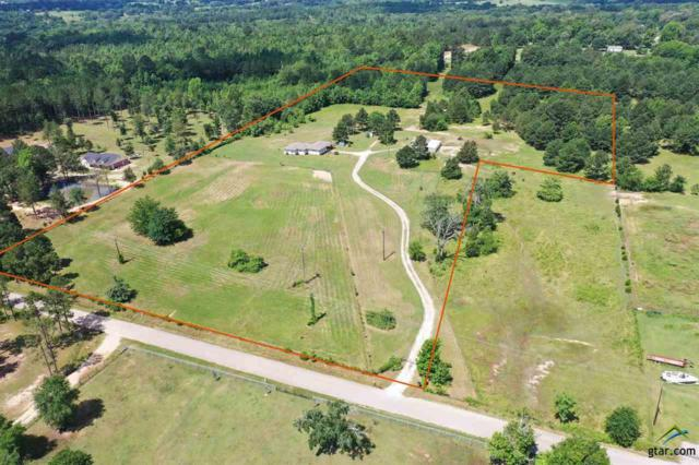 549 Ronnie Brown, Kilgore, TX 75662 (MLS #10110412) :: RE/MAX Impact