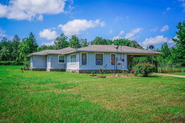 549 Ronnie Brown, Kilgore, TX 75662 (MLS #10110414) :: RE/MAX Impact