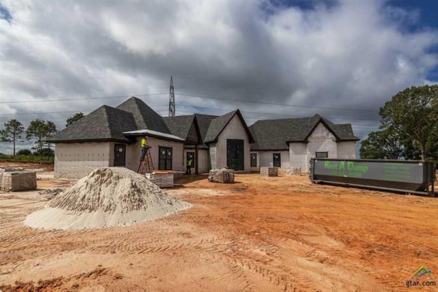 5909 Graemont Blvd, Tyler, TX 75703 (MLS #10110592) :: RE/MAX Impact